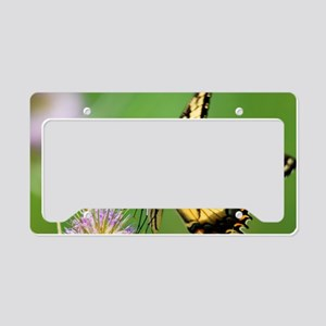 Eastern Tiger Swallowtail But License Plate Holder