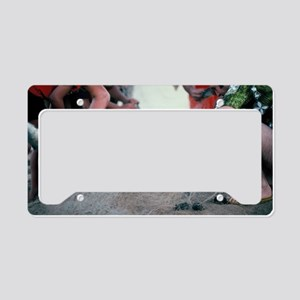 """Hu Ke Lau"" License Plate Holder"
