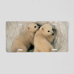 Polar Bear Cubs Aluminum License Plate