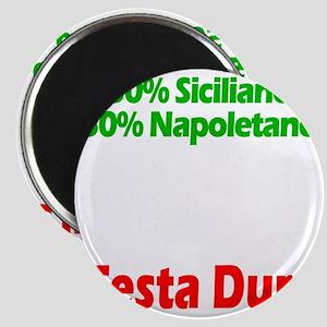 Siciliano - Napoletano Magnet