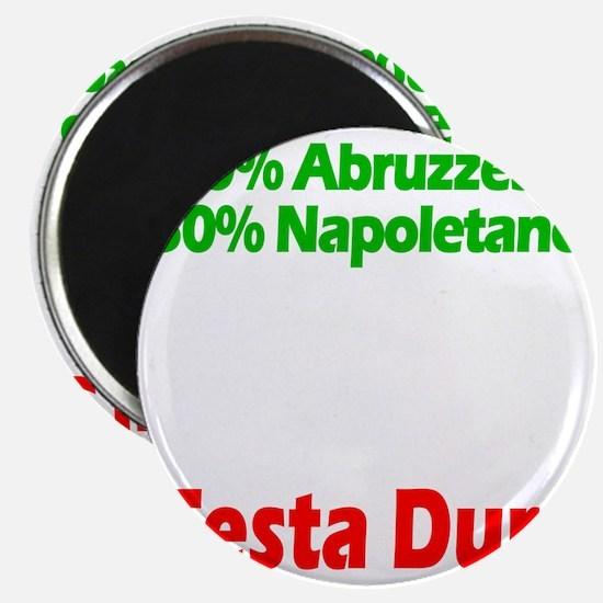 Abruzzese - Napoletano Magnet