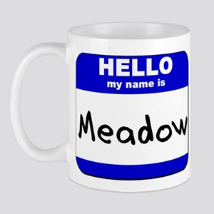 hello my name is meadow  Mug