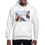 Creation & Basset Hooded Sweatshirt