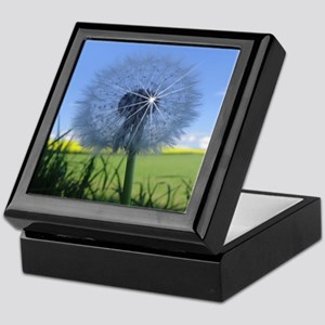Shiny dandelion Keepsake Box