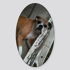 Old Boxer Sticker (Oval)