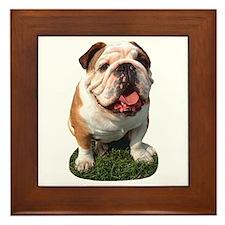Bulldog Photo Framed Tile