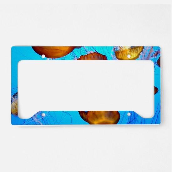 Jellyfish marmalade License Plate Holder