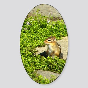 chipmunk kindlesleeve Sticker (Oval)
