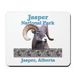 Jasper Park Bighorn Mousepad