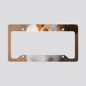 Russell Terrier License Plate Holder