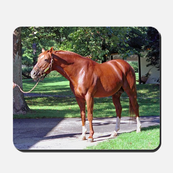 SECRETARIAT Mousepad