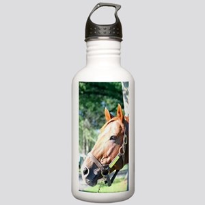 SECRETARIAT Stainless Water Bottle 1.0L