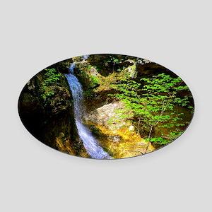 Eden Falls at Lost Valley Oval Car Magnet