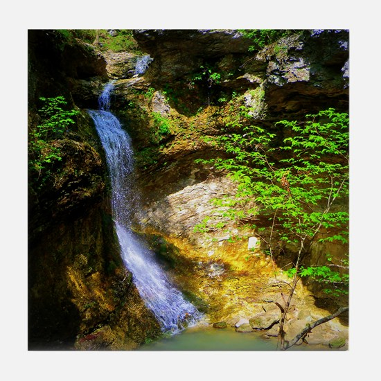 Eden Falls at Lost Valley Tile Coaster