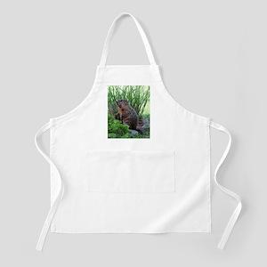 Groundhog Apron