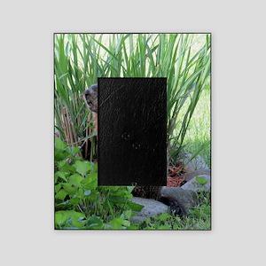 Groundhog Picture Frame