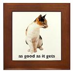 Calico Cat Photo Framed Tile