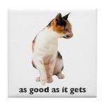 Calico Cat Photo Tile Coaster