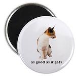 Calico Cat Photo Magnet