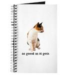 Calico Cat Photo Journal