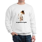 Calico Cat Photo Sweatshirt