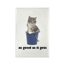 Tabby Cat Photo Rectangle Magnet