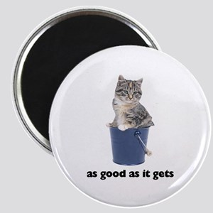 Tabby Cat Photo Magnet