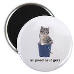 Tabby Cat Photo Magnet