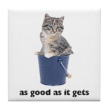 Tabby Cat Photo Tile Coaster