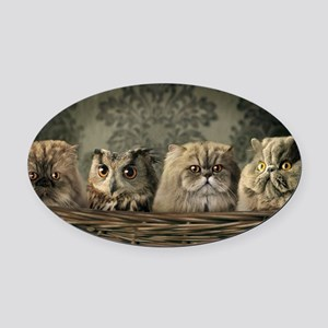 Cute Odd One Out Oval Car Magnet