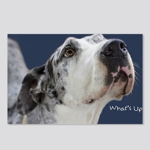 Great Dane Birthday Card Postcards (Package of 8)