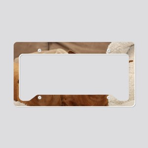Dachshund Birthday Card License Plate Holder