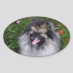 Keeshond Smiling Sticker (Oval)