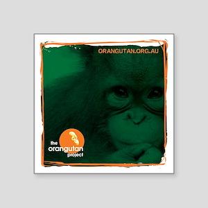 "Orangutan Face Square Sticker 3"" x 3"""