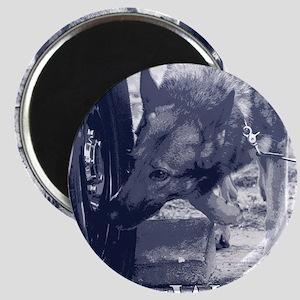 German Shepard Dog Nose Work K9 Magnet