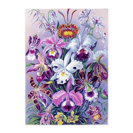 Cattleya Lady Slipper Orchids 34 X 5 X7 Area Rug By Admin