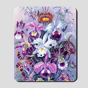 Cattleya, Lady Slipper Orchids 34 X 48 P Mousepad