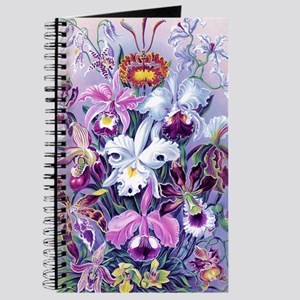 Cattleya, Lady Slipper Orchids 34 X 48 Pos Journal