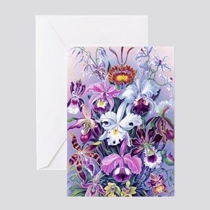 Cattleya, Lady Slipper Orchids 34 X  Greeting Card