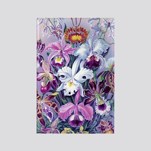 Cattleya, Lady Slipper Orchids 34 Rectangle Magnet