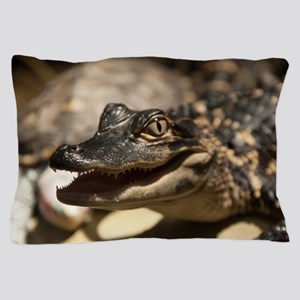 Baby Gator Pillow Case