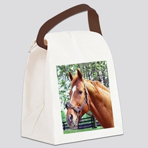 AFFIRMED Canvas Lunch Bag