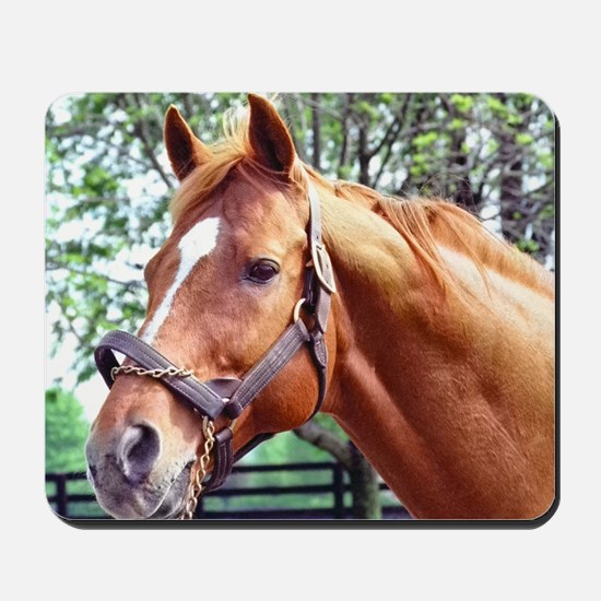 AFFIRMED Mousepad