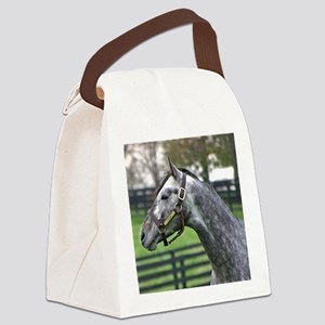 GIACOMO Canvas Lunch Bag