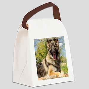 DreamCatchersTory Canvas Lunch Bag