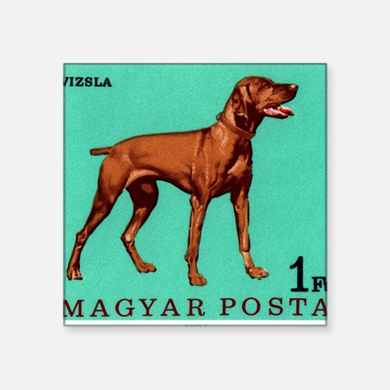 "1967 Hungary Vizsla Dog Pos Square Sticker 3"" x 3"""