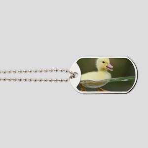 Duckling Dog Tags