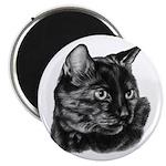 Tortoise Short-Hair Cat Magnet