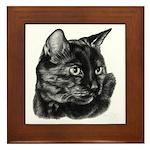 Tortoise Short-Hair Cat Framed Tile