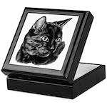Tortoise Short-Hair Cat Keepsake Box